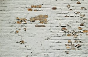 cracks and crevices on the wall