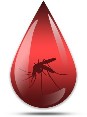 mosquito in the blood icon