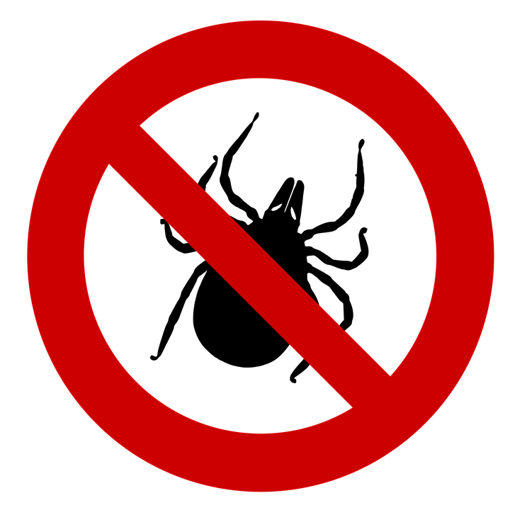 icon of a tick