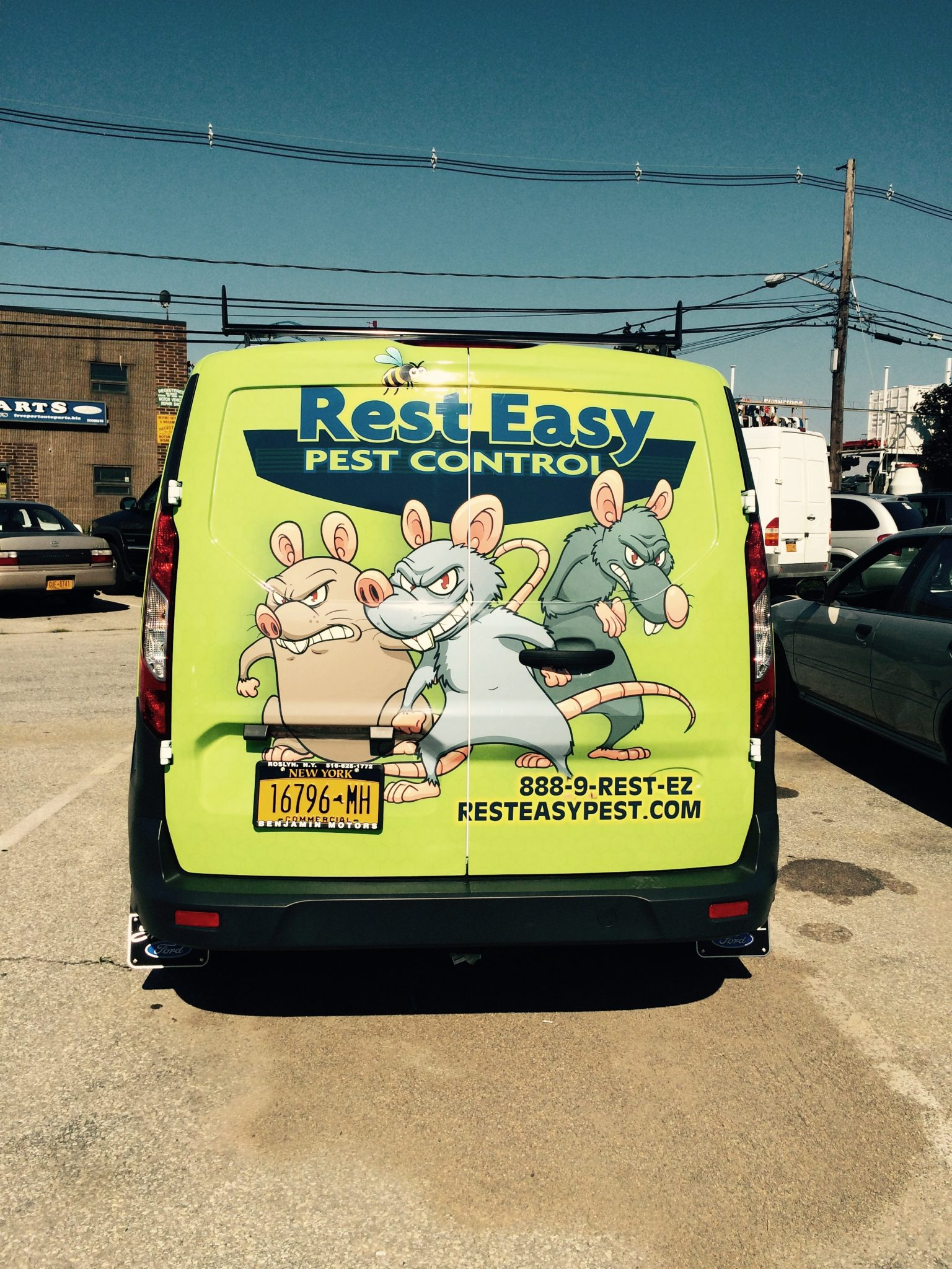Pest Control Services Photos Nyc Amp Long Island Rest