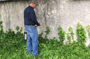 Exterminator Spraying