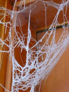 spider webs in vacant corner