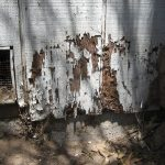termite damage at a long island home inpsected and treated by rest easy pest control
