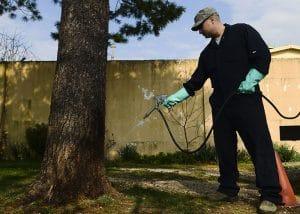 Exterminator Spraying Yard